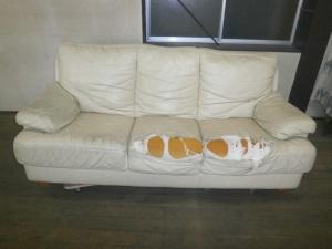 椅子やソファーの傷んだ部分だけ張り替えれば、お安く修理が可能な革研究所 名古屋東店